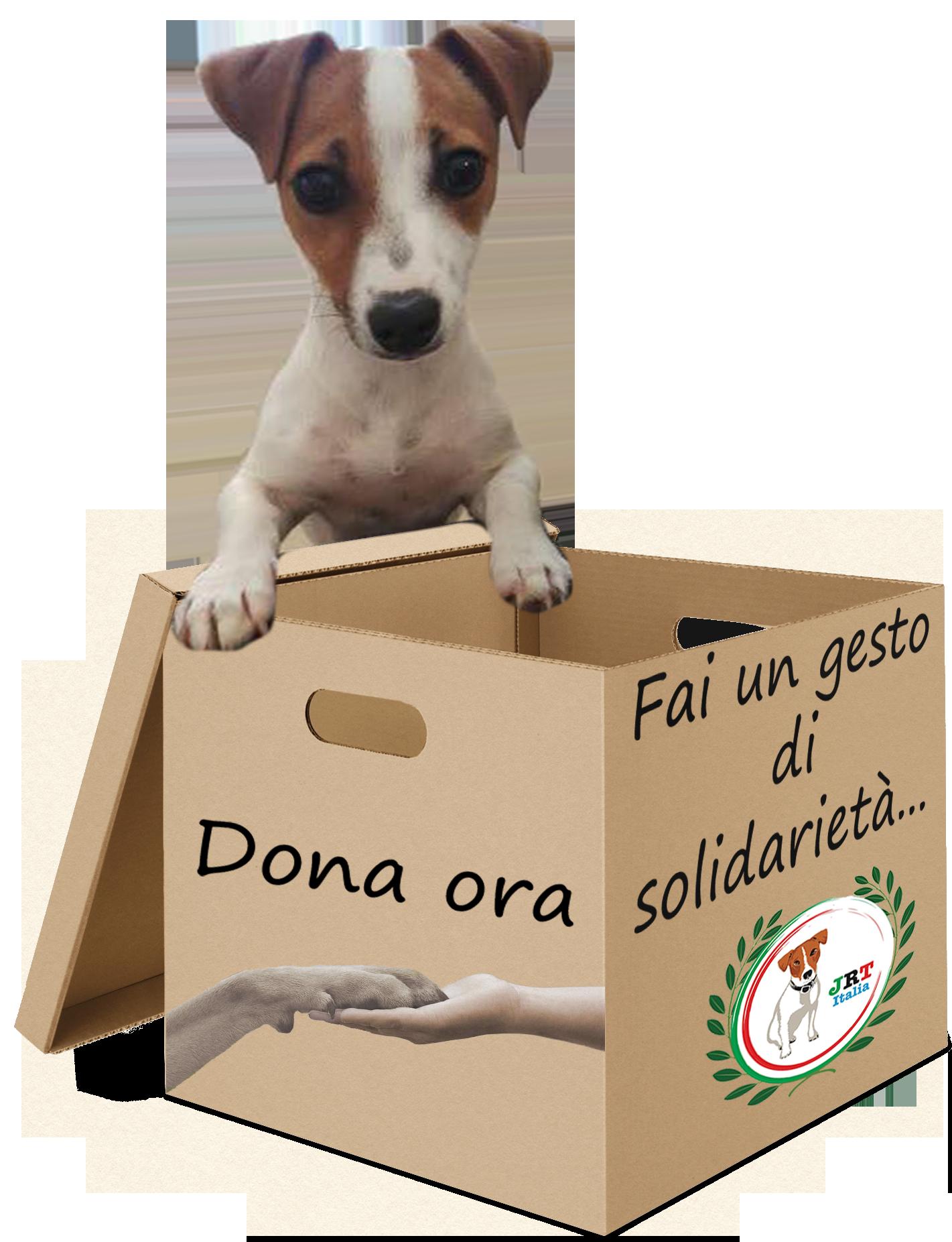 dona-ora Donazioni Aziende